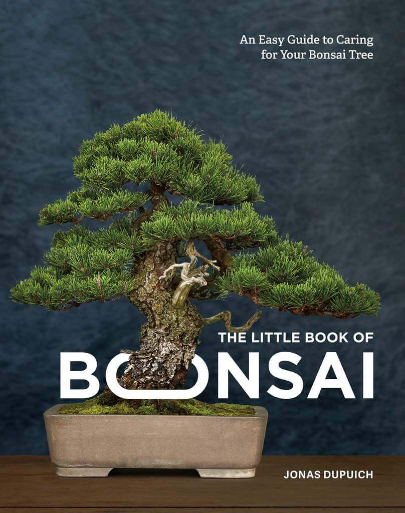 The Little Book of Bonsai – book cover