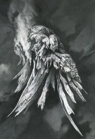 """Limb, Shattered"" graphite and pencil on bristol board."